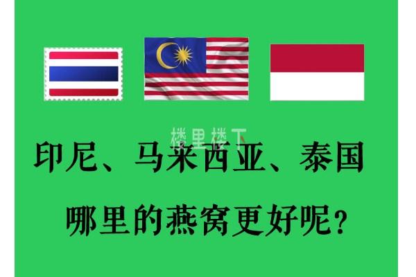 马来西亚燕窝、印尼燕窝和泰国燕窝到底哪里的好?为什么?
